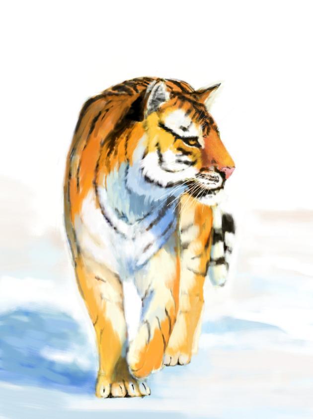 cvbtruong_tiger